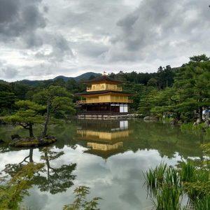 Ежегодная налоговая прибыль в Японии выросла на 15%