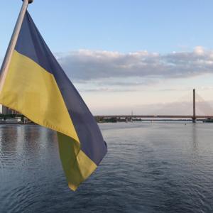 Декларации в Украине